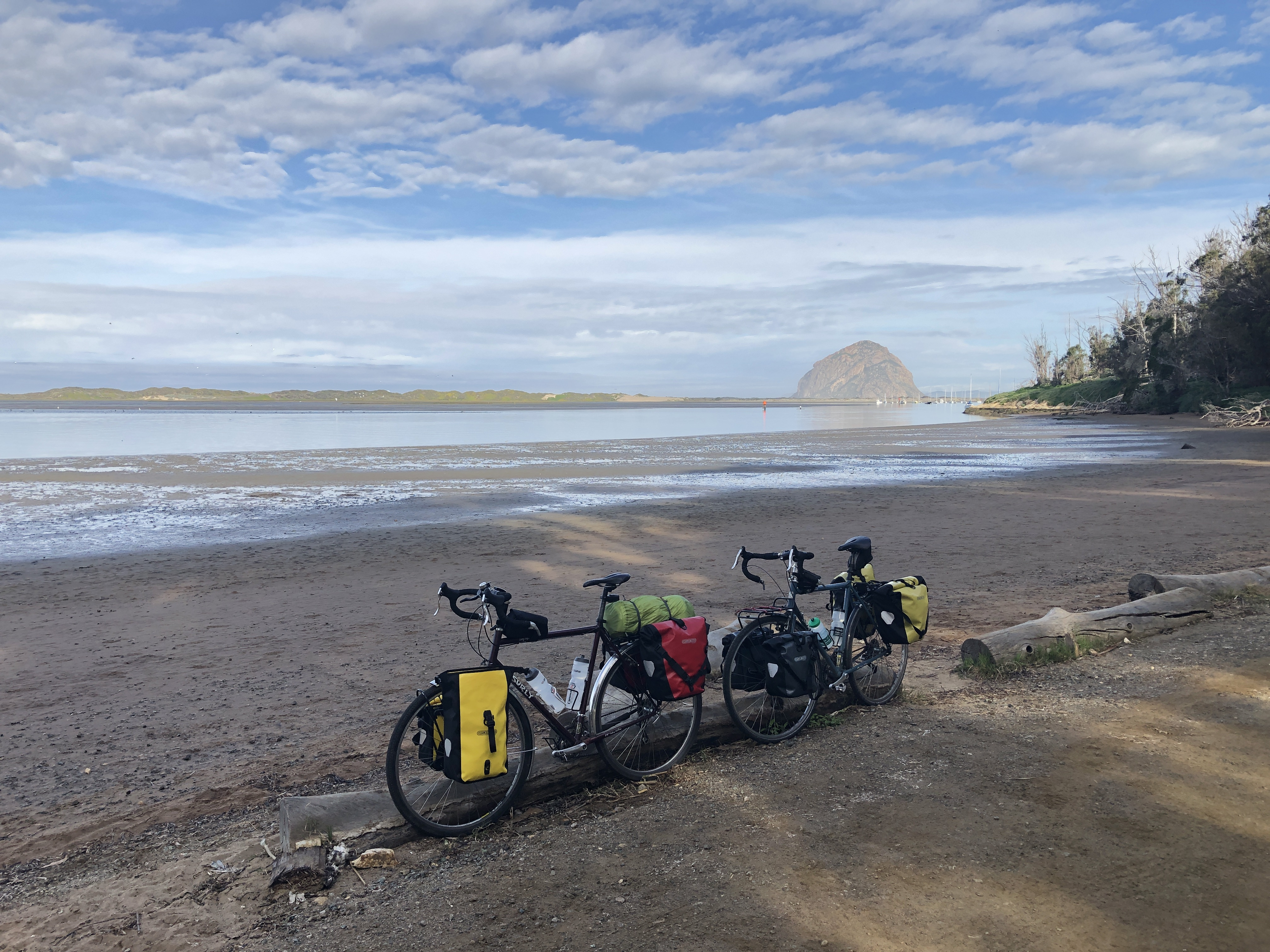 two touring bicycles leaning against a log on the beach by Morro Bay state park