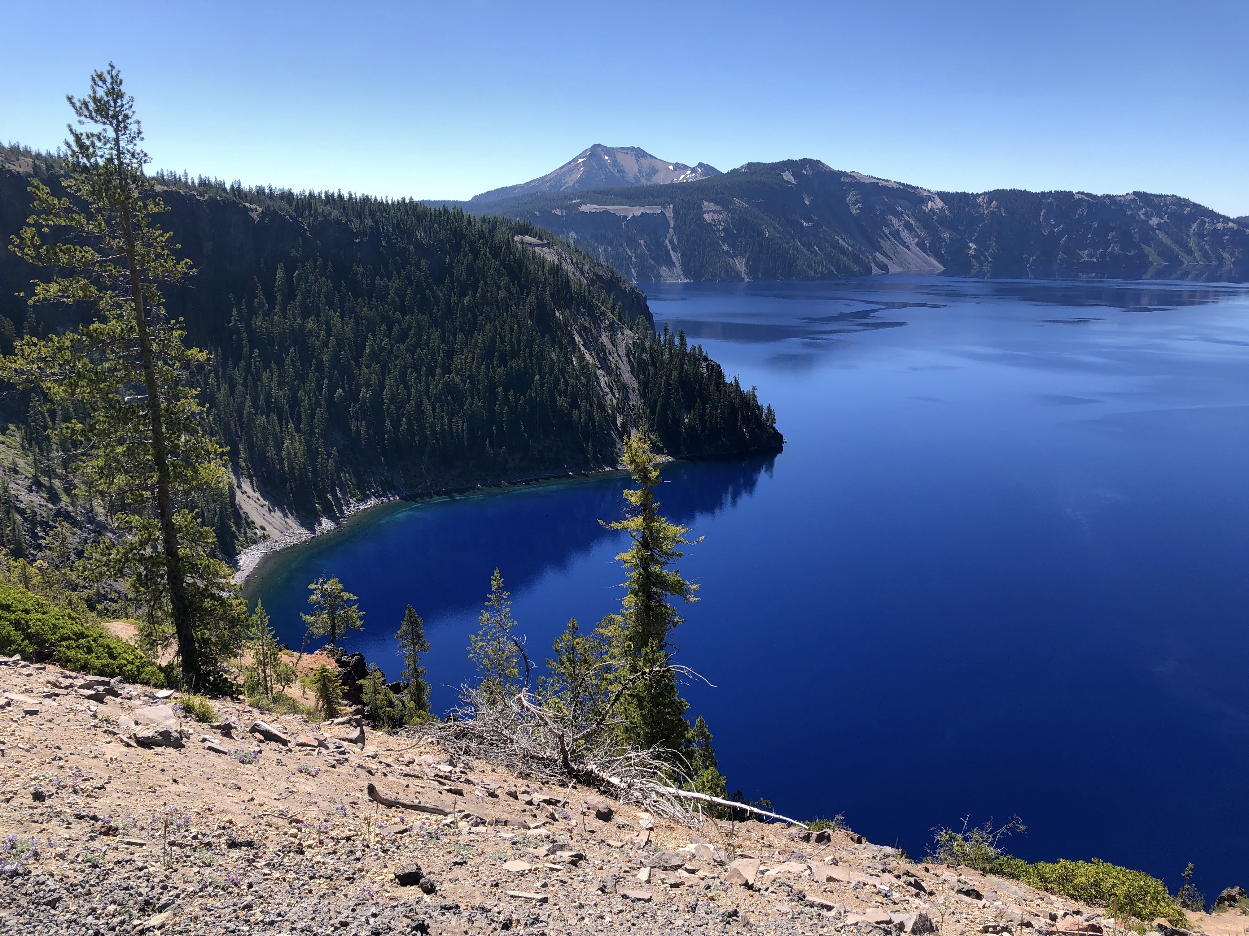 crater lake from the north rim on a clear day