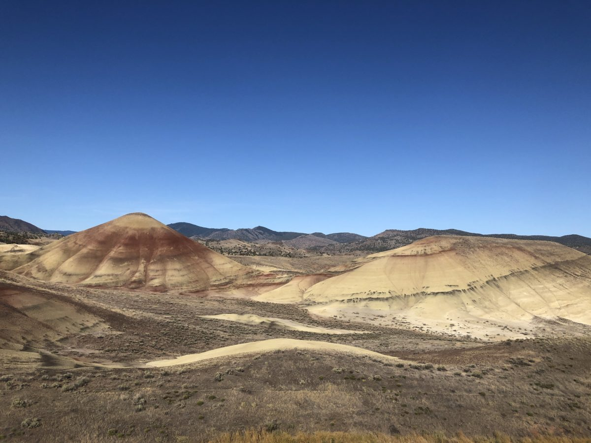 Waking in Painted Hills